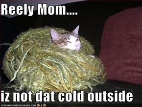 Reely Mom....  iz not dat cold outside