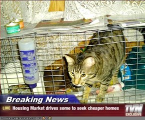 Breaking News - Housing Market drives some to seek cheaper homes