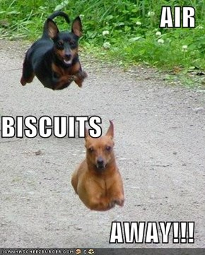 AIR BISCUITS AWAY!!!