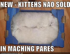 NEW - KITTEHS NAO SOLD  IN MACHING PARES