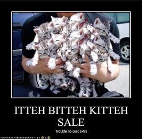 ITTEH BITTEH KITTEH SALE