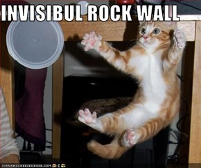 INVISIBUL ROCK WALL