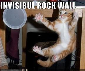 INVISIBUL ROCK WALL