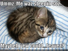 Ummz..Me waz sleepin soz...  Maybeh yew could...leavez?