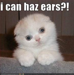 i can haz ears?!