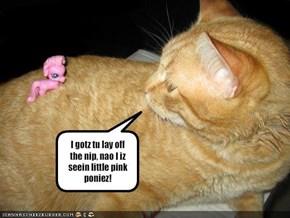 I gotz tu lay off the nip, nao I iz seein little pink poniez!