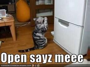 Open sayz meee