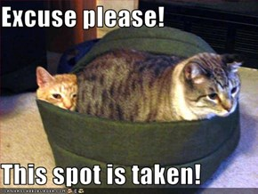 Excuse please!  This spot is taken!