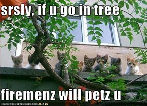 srsly, if u go in tree  firemenz will petz u