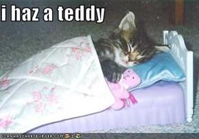 i haz a teddy