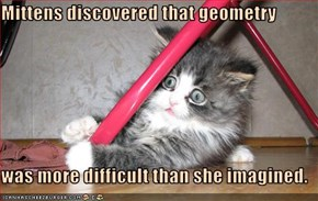 Mittens discovered that geometry  was more difficult than she imagined.