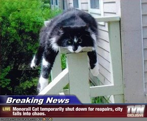 Breaking News - Monorail Cat temporarily shut down for reapairs, city falls into chaos.