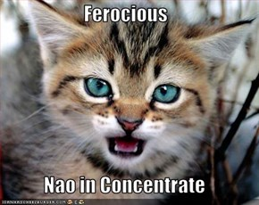 Ferocious  Nao in Concentrate