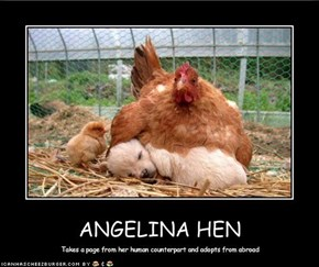 ANGELINA HEN
