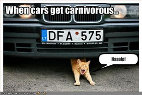 When cars get carnivorous...
