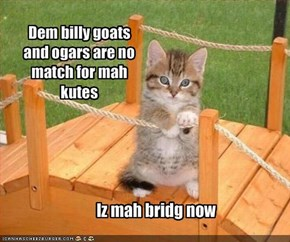 Dem billy goats and ogars are no match for mah kutes