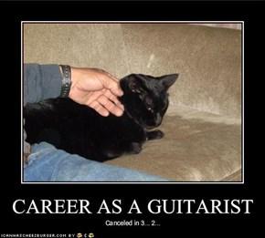 CAREER AS A GUITARIST