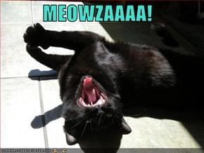 MEOWZAAAA!