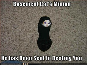 Basement Cat's Minion  He has Been Sent to Destroy You