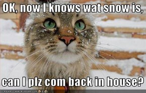 OK, now I knows wat snow is,     can I plz com back in house?