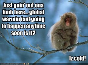 Just goin' out ona limb here... global warmin isnt going to happen anytime soon is it?