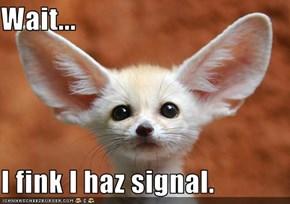Wait...  I fink I haz signal.