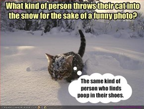 What kind of person throws their cat into the snow for the sake of a funny photo?