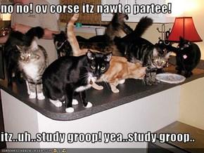 no no! ov corse itz nawt a partee!  itz..uh..study groop! yea..study groop..