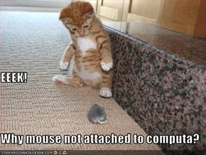 EEEK! Why mouse not attached to computa?