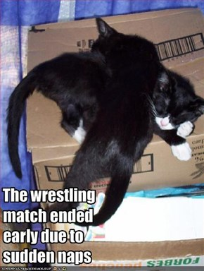 The wrestling match ended early due to sudden naps