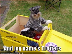 ...And my name's Trotters