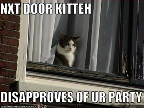 NXT DOOR KITTEH  DISAPPROVES OF UR PARTY