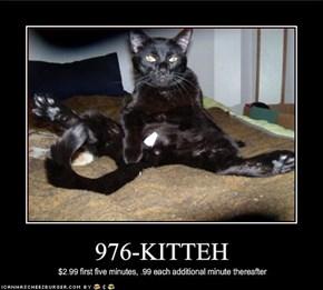 976-KITTEH