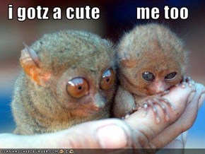 i gotz a cute          me too