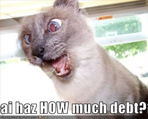 ai haz HOW much debt??