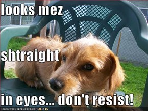 looks mez shtraight  in eyes... don't resist!