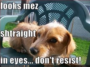 looks mez shtraight  in eyes... don't resist!