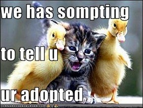 we has sompting to tell u ur adopted