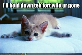 I'll hold down teh fort wile ur gone
