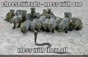 cheesefriends - mess with one  mess with them all