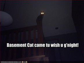Basement Cat came tu wish u g'night!