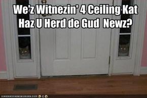 We'z Witnezin' 4 Ceiling KatHaz U Herd de Gud  Newz?