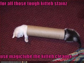 for all those tough kitteh stainz   use magictube the kitteh cleaner