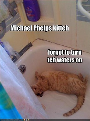 Michael Phelps kitteh