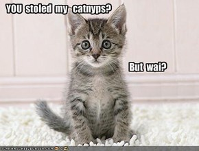 YOU  stoled  my   catnyps?