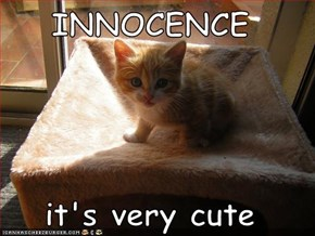 INNOCENCE  it's very cute