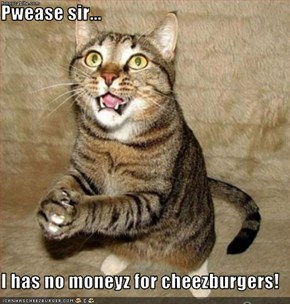 Pwease sir...  I has no moneyz for cheezburgers!