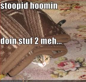 stoopid hoomin doin stuf 2 meh...