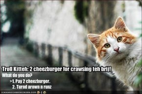 Troll Kitteh: 2 cheezburger for crawsing teh brij!