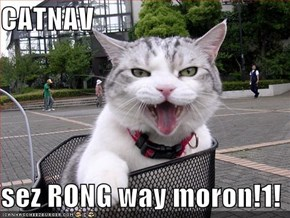 CATNAV   sez RONG way moron!1!